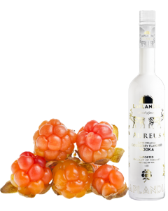 Laplandia Aureus Cloudberry Vodka 40% vol. 1000ml